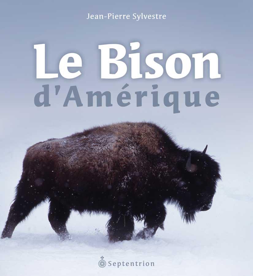 Bison d 39 am rique le septentrion la r f rence en histoire - Coloriage bison d amerique ...